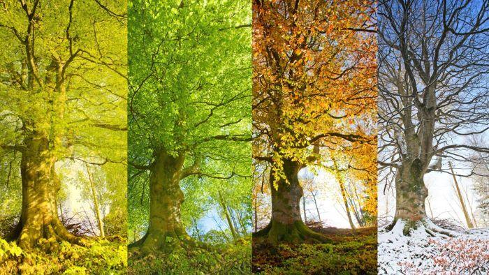 Four Seasons of Microadventure - Alastair Humphreys
